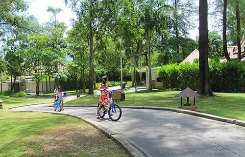 バンヤンツリーで自転車に乗る子供たち
